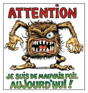 raleur-vip-blog-com-911739mauvai10